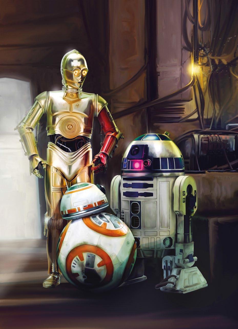 Poster XXL Star Wars 3 Droïdes - Panoramique - KOMAR