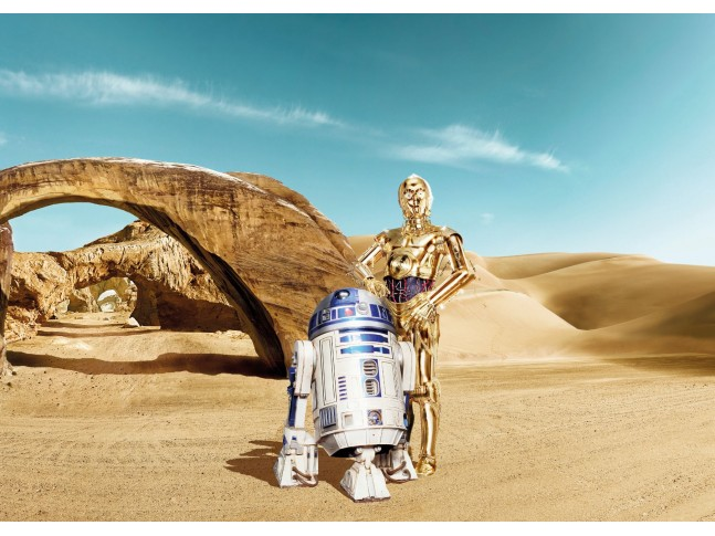 Poster XXL Star Wars Lost Droids - Panoramique - KOMAR